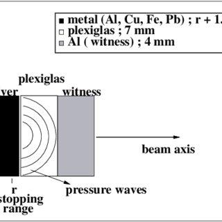 Immunopathogenesis of acute motor axonal neuropathy