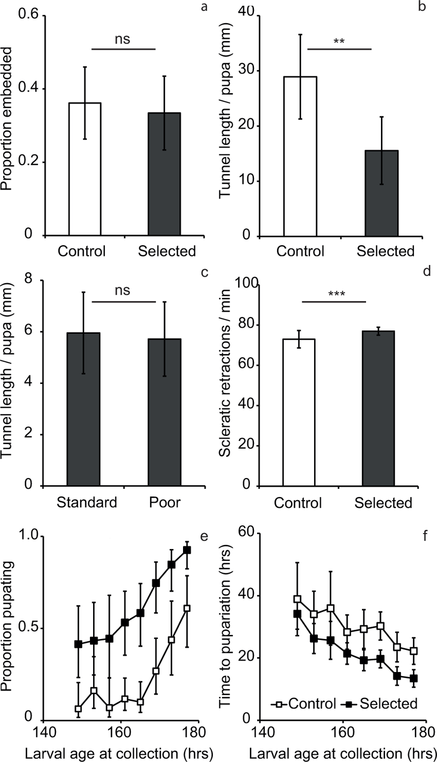 Building behavior traits in malnutrition tolerant selected