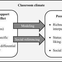 (PDF) Social dynamics in the classroom: Teacher support