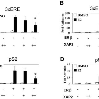 (PDF) The Immunophilin-Like Protein XAP2 Is a Negative