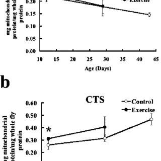 The level of spontaneous locomotor activity (SLA) of