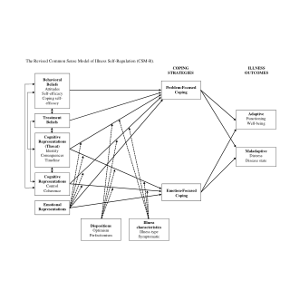 (PDF) The Common Sense Model of Self-Regulation: Meta