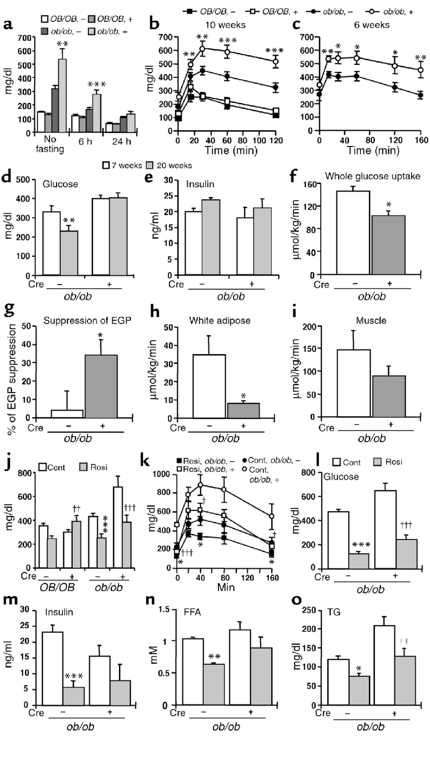 Effect of PPARγ deficiency on glucose homeostasis in the