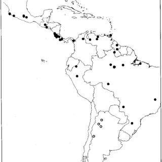 Columnea ferruginea. A. Habit. B. Calyx and gynoecium with