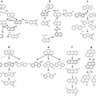 (PDF) Conversion of polycyclic aromatic hydrocarbons