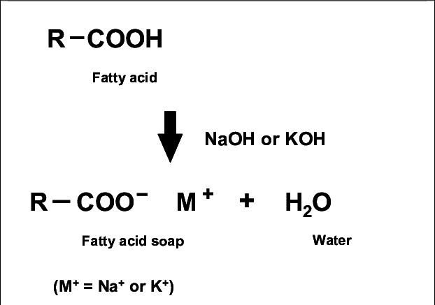 Saponification reaction of fatty acids with alkali