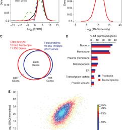 comparison of proteomics and rna seq data a distribution of fpkm data [ 850 x 1242 Pixel ]