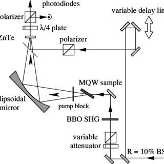 Schematic illustration of the setup used for detection of