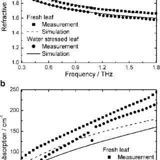 (PDF) Evaluation of the Leaf Water Status by means of the