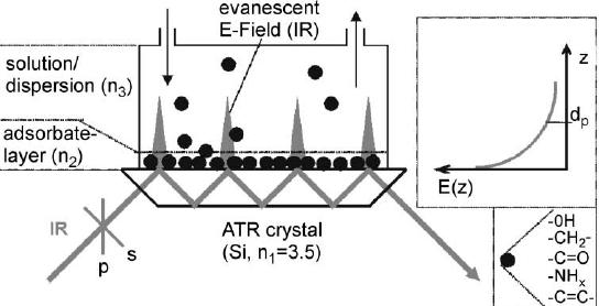 Principle of in-situ ATR-FTIR spectroscopy featuring