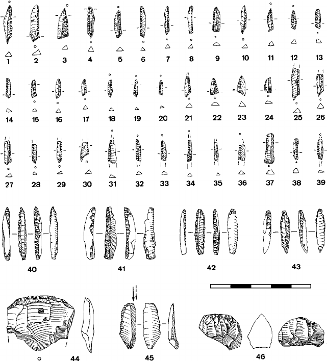 Sarching '83 (Bavaria): Mesolithic lithic artifacts