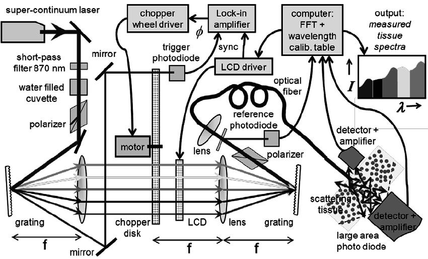 Httpsewiringdiagram Herokuapp Compostyamaha Vmax Vmx12n