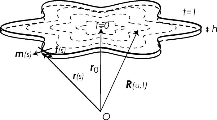 The differential geometry of a monolayer domain. rs, ts