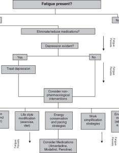 Clinical decision making flow chart for treating fatigue in ms adapted from macallister and also rh researchgate