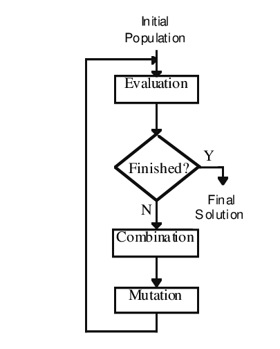 The subtasks performed by a basic genetic algorithm