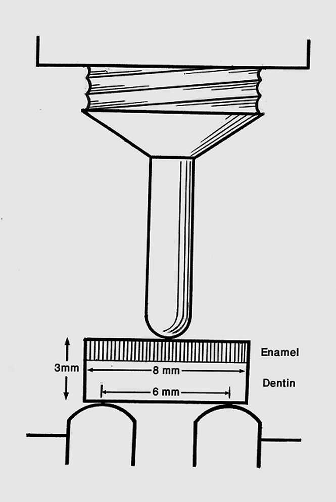 Schematic view of three-point bending force on the