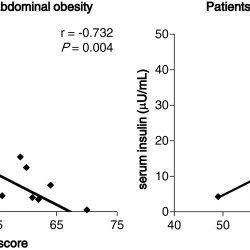 (PDF) Correlations of non-exercise activity thermogenesis