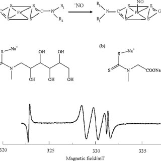 Chemical reaction between the stable free radical carboxyl