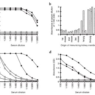 Effect of α-gal epitope expression on in vitro