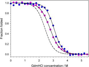 Equilibrium denaturation of monomeric protein L variants
