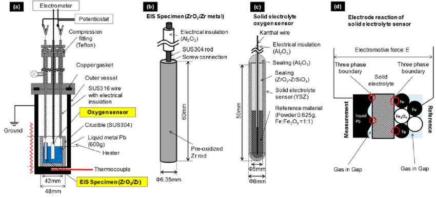 (a) Test apparatus for electrochemical measurement in