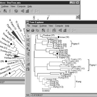 Web browser module in MEGA for accessing databanks and