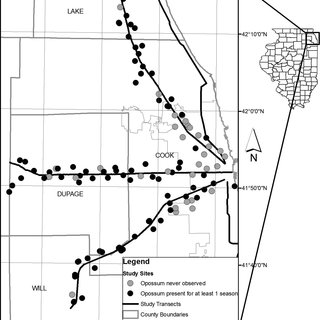 —Map of study sites and transects in the Chicago