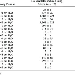 (PDF) Lung Stress and Strain during Mechanical Ventilation