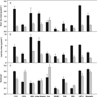 (PDF) Screening of Poplar Clones for Cadmium