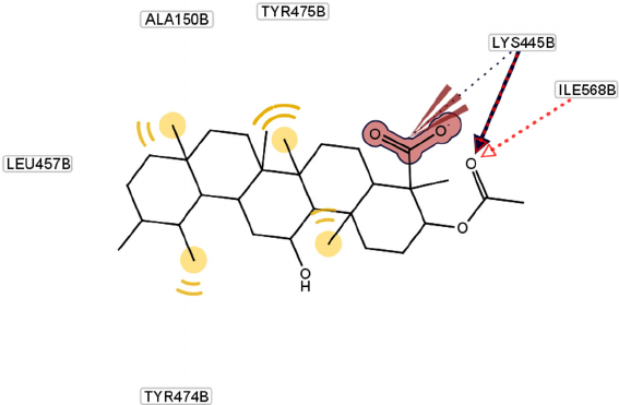 Molecular docking of compound 2 and its interaction with