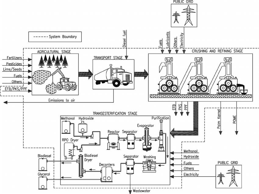 Scheme of the system boundaries of the biodiesel