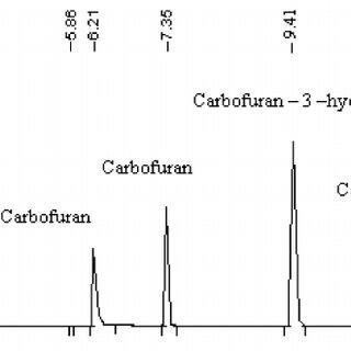 Schematics of methanogenic activity test set-up