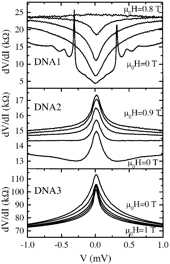 Voltage dependence of the differential resistance measured