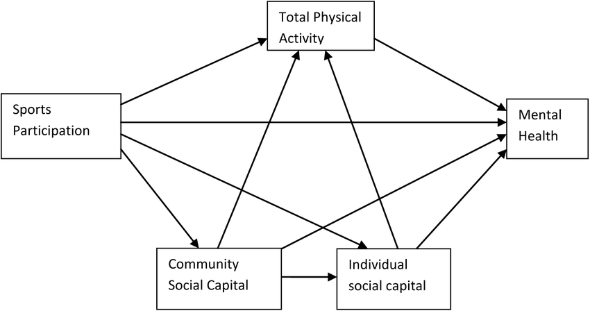 Hypothesized model of relationships between sport