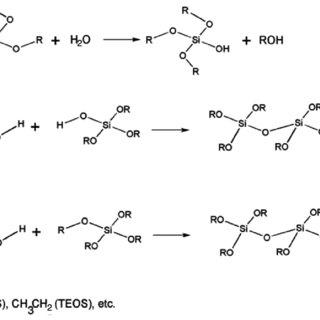 Mechanism of silica gel formation through the sol-gel