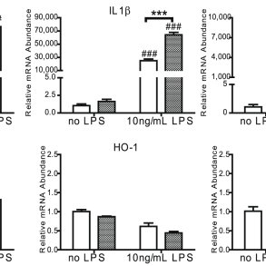 LPS and TNF stimulate microglia and macrophages by binding
