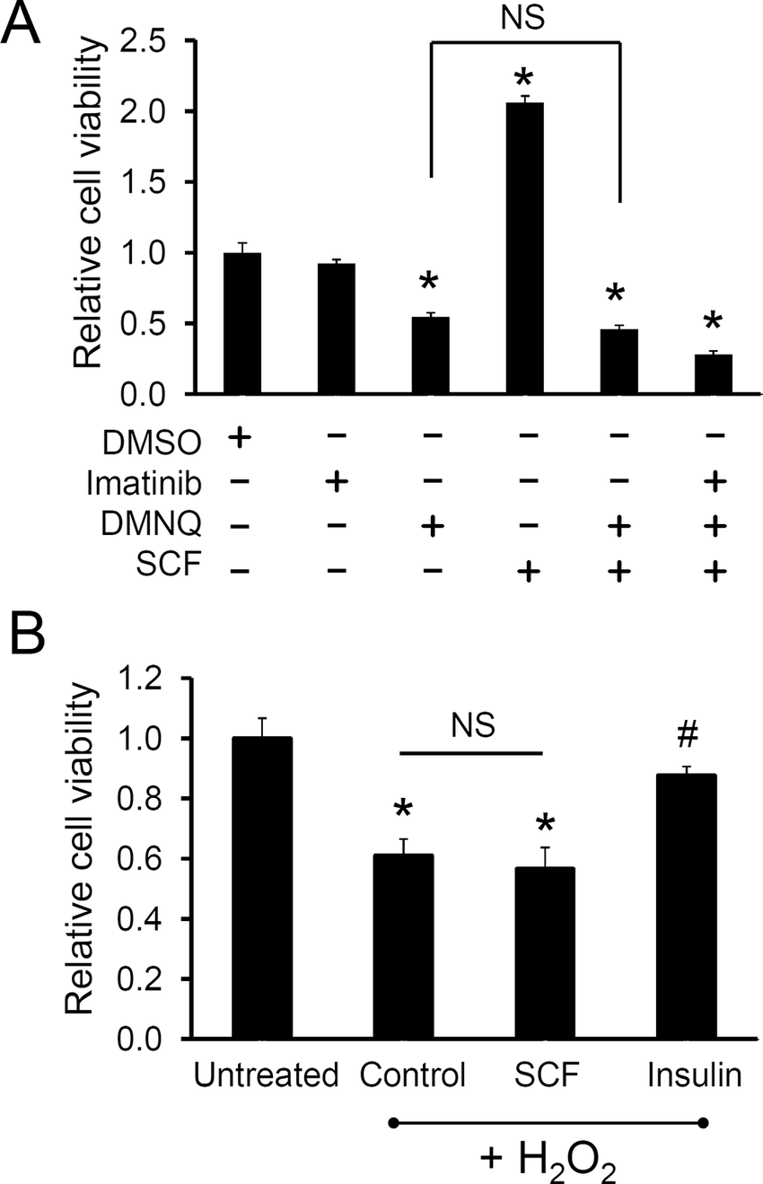 hight resolution of a human c kit cpcs were pre treated with scf for 24 hr in serum free media and subjected to 8 m dmnq treatment b cells