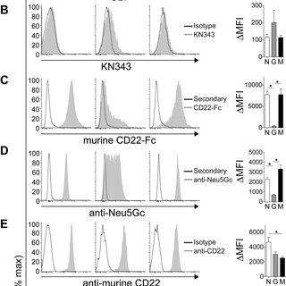 (PDF) Unmasking of CD22 on germinal center B-cells occurs