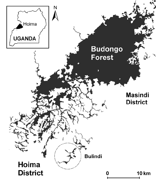 2. Map showing the Budongo Forest Reserve in the Masindi