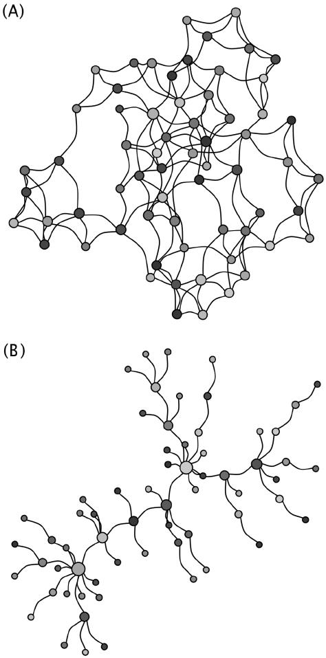 Two example random networks. (A) A Watt-Strogatz random