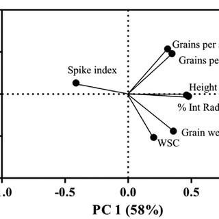 Combined by-plot of yield (Y), grain number per square