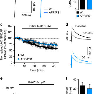 (PDF) Early synaptic deficits in the APP/PS1 mouse model
