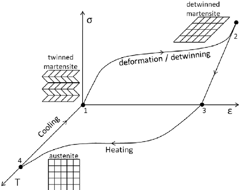 Schematic representation of shape memory effect. At point