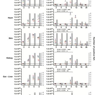 Safety-efficacy profile of double Δ56-57 and triple Δ56