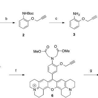 (A) Synthesis of dextran conjugates by Click Chemistry