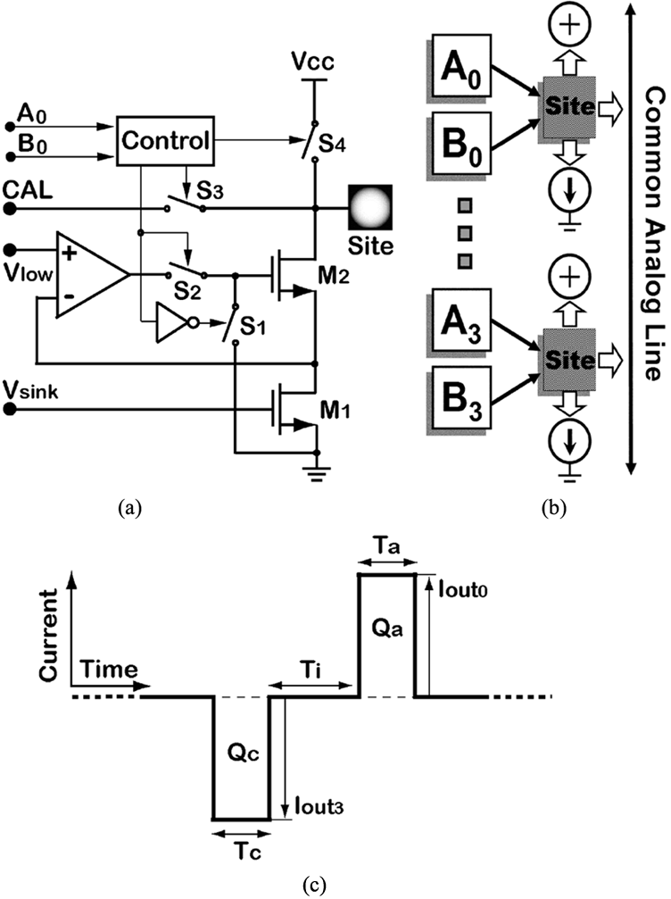 (a) A simplified site driver schematic. (b) Each