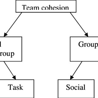4: A conceptual model for team cohesion in sport (Adapted