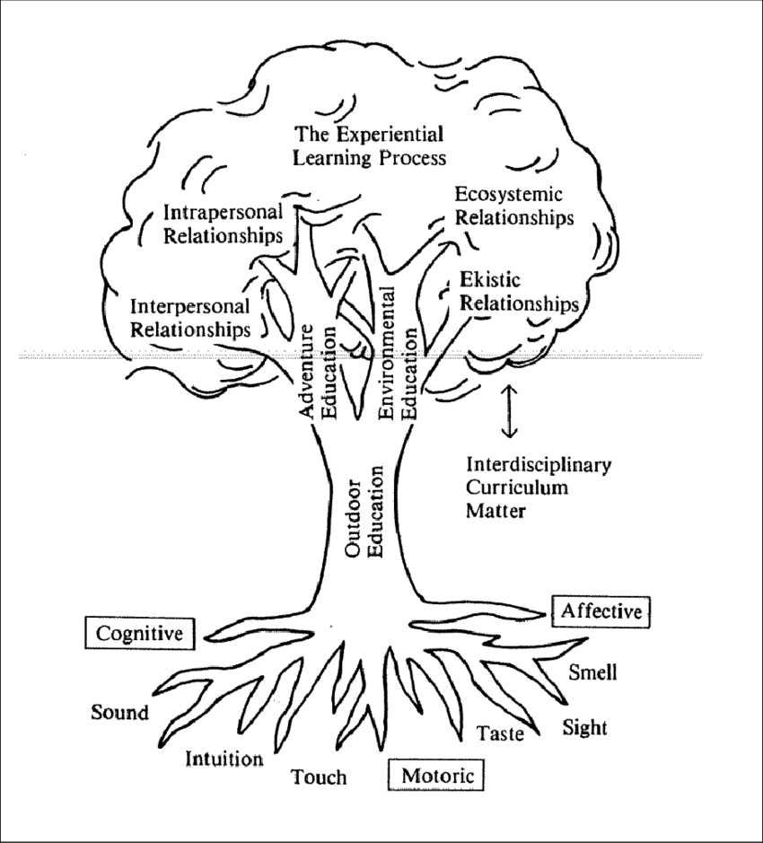 1: Outdoor Education Tree (Source: Priest, 1986