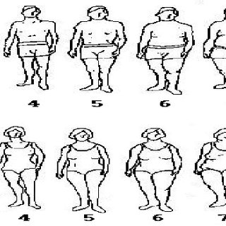 (PDF) Relationship between sport type and body image of