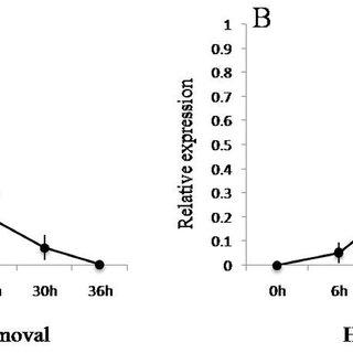 Developmental profile of cuticular protein genes. Each